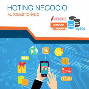 ingenio-hosting-negocio